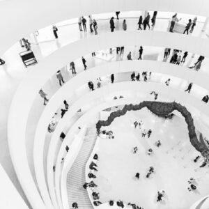 The Guggenheim Series